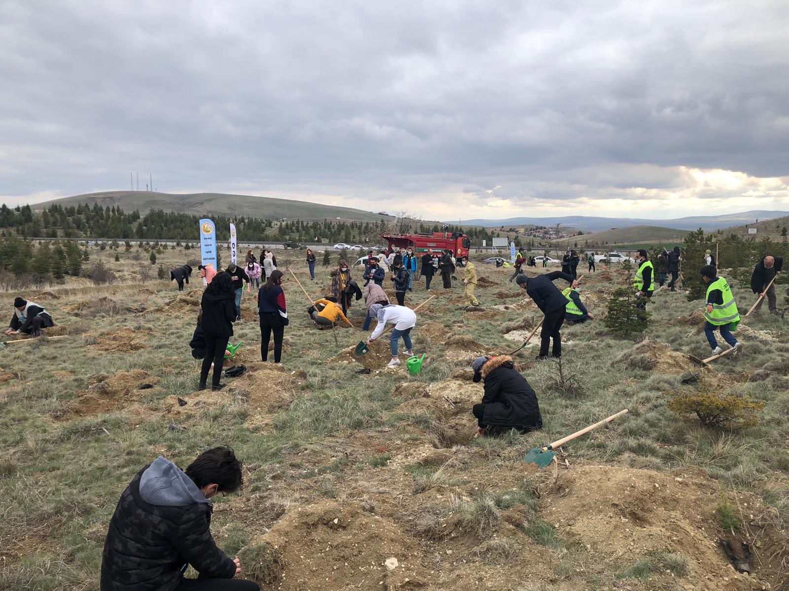 """Mustafa Fatih ÖZKÖK Hatıra Ormanı ile """"Köklerimiz Bu Topraklarda"""""""